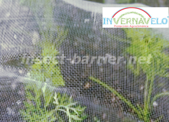 insect barrier protecting the crops against the insects.